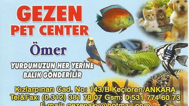 ANKARA PET SHOP
